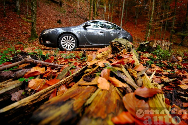 Photo Opel Insignia 2.0 CDTI 160 modèle 2009